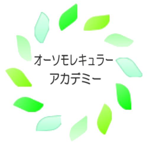 logo-facebook-academy